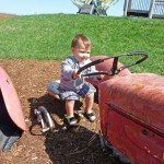 Driving a tractor - little boys heaven