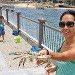 Crab off Redcliffe Jetty