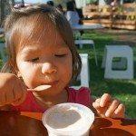 Vanilla and Elderberry Ice cream at Maggie Beer Farm Shop