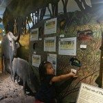 Plenty of interactive displays for the kids. Windows to wetlands.