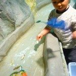 Fishing at the Children's Museum