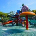 Splash at the impressive water park