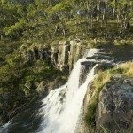 Watefall Way - Ebor Falls, Ebor. Photo: Hamilton Lund; Destination NSW