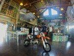 Eclectic Bike and souvenir shop