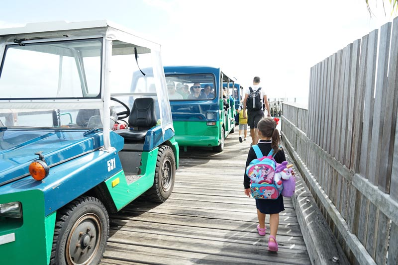 Arriving at Kingfisher Bay Resort, greeted with a shuttle service to reception